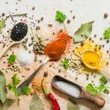 Spezie in cucchiai differenti su un fondo bianco di pietra Uno scattering delle spezie Fotografie Stock
