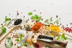 Spezie in cucchiai differenti su un fondo bianco di pietra Uno scattering delle spezie Immagine Stock
