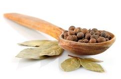 Spezie in cucchiaio di legno isolato su bianco Fotografie Stock