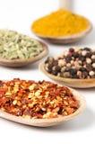 Spezie culinarie Fotografia Stock