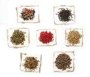 Spezie dei granelli di pepe su documento Fotografie Stock