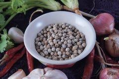 Spezie dei peperoni Immagine Stock