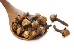 Spezie del chiodo di garofano e cucchiaio di legno su fondo bianco Fotografie Stock Libere da Diritti