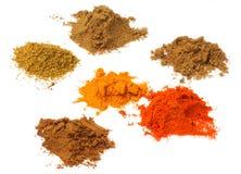 Spezie del curry della miscela Fotografia Stock