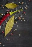 Spezie del peperone e foglia di alloro pungenti sull'albero nero Vista da sopra Fotografie Stock Libere da Diritti
