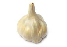 Spezie dell'aglio Immagini Stock