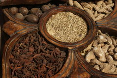 Spezie dell'India Immagine Stock