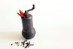 Spezie della smerigliatrice Fotografia Stock Libera da Diritti