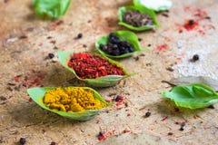 Spezie differenti spruzzate in foglie verdi Immagini Stock