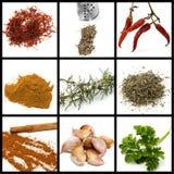 Spezie e collage dei condimenti Fotografia Stock