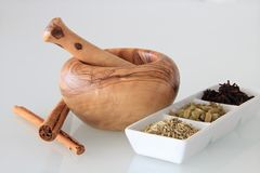 Spezie e mortaio indiani Immagini Stock