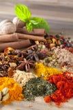 Spezie e tè delle erbe Fotografia Stock