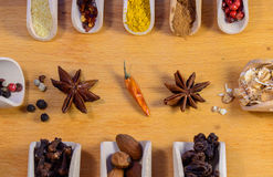 Spezie ed altri ingredienti Fotografie Stock Libere da Diritti