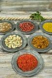 Spezie ed erbe in ciotole del metallo Ingredienti di cucina e dell'alimento Fotografia Stock