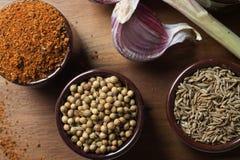 Spezie ed erbe in ciotole di ceramica Ingredienti di cucina e dell'alimento Immagine Stock