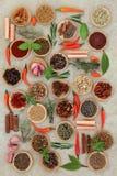 Spezie ed erbe dei peperoncini rossi Fotografie Stock Libere da Diritti