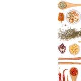 Spezie ed erbe differenti su fondo bianco Vista superiore Fotografie Stock
