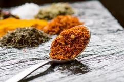 Spezie ed erbe differenti su un'ardesia nera Cucchiaio del ferro con peperoncino Spezie indiane Ingredienti per cucinare Cibo san Immagini Stock