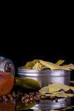 Spezie ed erbe, foglia di alloro, pepe nero Fotografia Stock Libera da Diritti