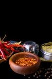 Spezie ed erbe, foglia di alloro, pepe nero Immagini Stock Libere da Diritti