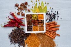 Spezie ed erbe indiane nella scatola sulla tavola grigia: anice, pepe fragrante, cannella, noce moscata, foglie della baia, papri immagini stock