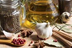 Spezie ed olio di oliva immagine stock libera da diritti