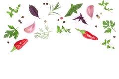 Spezie fresche ed erbe isolate su fondo bianco con lo spazio della copia per il vostro testo Vista superiore del timo di basilico Fotografie Stock
