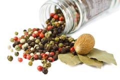 Spezie: granelli di pepe mixed, fogli della baia, noce moscata Fotografia Stock