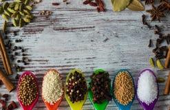 Spezie meravigliose nei cucchiai variopinti Giacimento detritico degli ingredienti differenti della spezia Immagini Stock Libere da Diritti