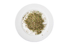 Spezie miste su un piatto bianco Fotografie Stock Libere da Diritti