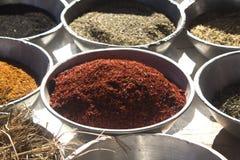 Spezie nell'Egitto Fotografia Stock