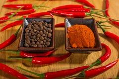Spezie, pepe fresco ed asciutto Fotografia Stock