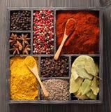 Spezie in pepe rosa e nero della scatola, polvere della paprica, curry, baia Fotografie Stock