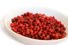 Spezie - pepe rosso Fotografie Stock