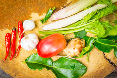 Spezie per cucinare Fotografia Stock
