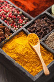 Spezie in scatola: pepe rosa e nero, polvere della paprica, curry, baia Fotografia Stock