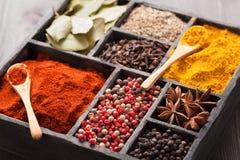 Spezie in scatola: pepe rosa e nero, polvere della paprica, curry, baia Immagine Stock
