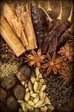 Spezie su legno Fotografia Stock Libera da Diritti