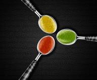 Spezie sui cucchiai Fotografia Stock Libera da Diritti
