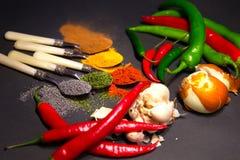 Spezie sui cucchiai Fotografia Stock