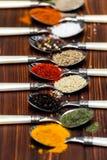 Spezie sui cucchiai Fotografie Stock
