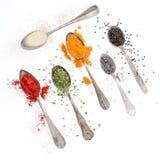 Spezie sui cucchiai dell'argenteria e sul fondo bianco Immagine Stock
