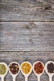 Spezie sui cucchiai di legno Fotografie Stock Libere da Diritti