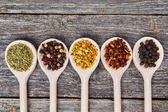Spezie sui cucchiai di legno Fotografia Stock Libera da Diritti