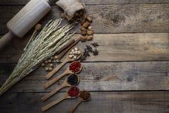 Spezie sui cucchiai di legno Fotografia Stock