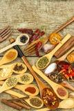Spezie sui cucchiai di legno Vendite delle spezie esotiche Alimento del condimento Spezie aromatiche Fotografia Stock