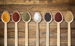 Spezie sul cucchiaio di legno Immagini Stock Libere da Diritti