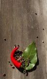 Spezie sulla quercia Fotografia Stock Libera da Diritti