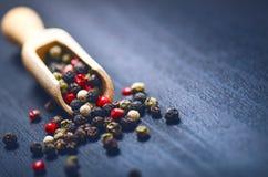 Spezie variopinte su una tavola blu scuro Concetto della cucina e di cottura Piccante su un cucchiaio di legno Fotografia Stock Libera da Diritti