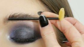Spezielle Bürste für das Kämmen von Augenbrauen Berufsmaskenbildner kämmt die Augenbrauen des Mädchenmodells stock video footage